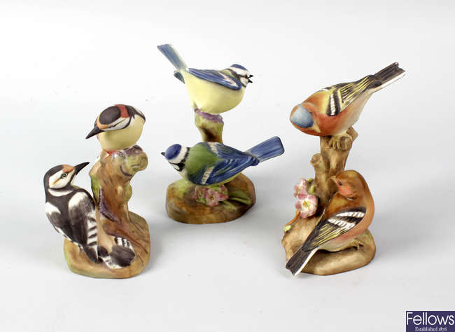 A group of eleven Royal Worcester porcelain birds