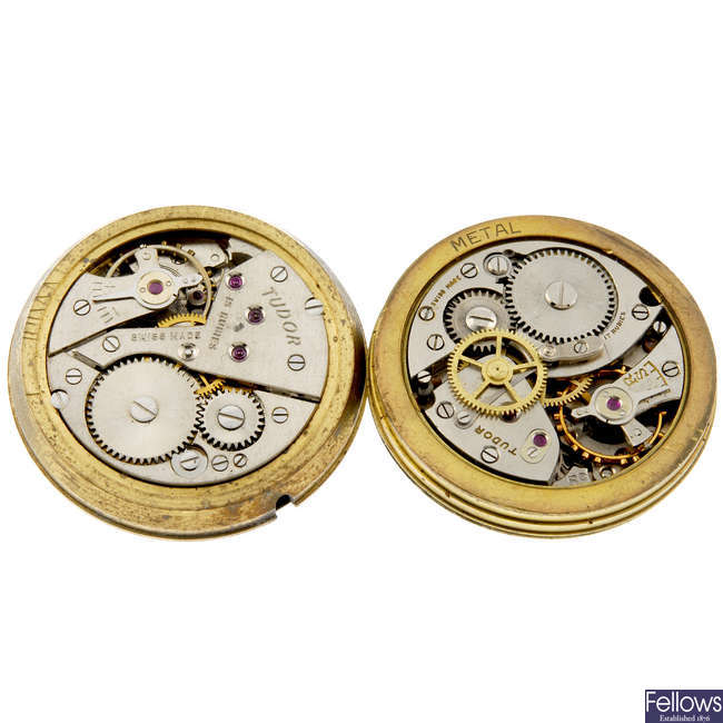 TUDOR - a small group of watch movements.